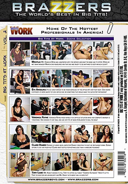 le dvd X Big Tits at Work 2