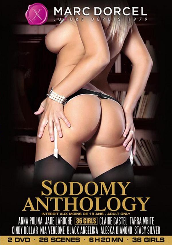 Sodomy Anthology Partie 1